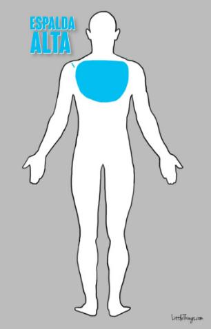 espalda-alta