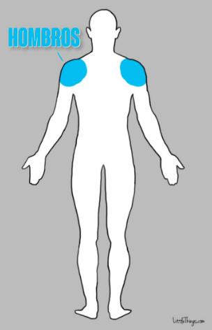 hombros